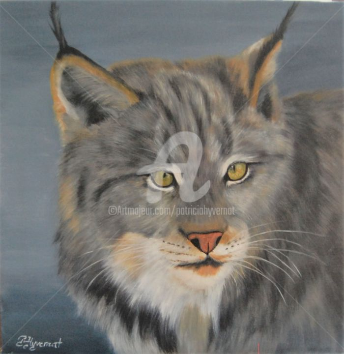 lynx   acrylique sur toile - © 2016 lynx, peinture de lynx, tableau de lynx, peinture animalière, peintre animalier, nature, wildflie painting, art contemporain, peinture contemporaine, artiste contemporain, artiste animalier, réalisme, peinture figurative, art animalier, artistes de talent, peintre de talent, wildlife, vie des animaux Online Artworks