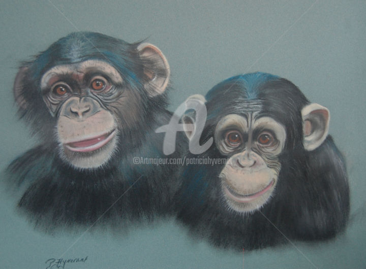 les deux amis chimpanz s pastels d 39 animaux. Black Bedroom Furniture Sets. Home Design Ideas