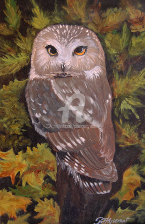 chouette petite nyctale - Painting ©2009 by Patricia Hyvernat -                                                                        Figurative Art, Realism, Canvas, Animals, hibou, chouette, peinture de chouette, peinture animalière, peintre animalier, art animalier, foret, wildlife painiting, dessin de chouette, dessin de hibou