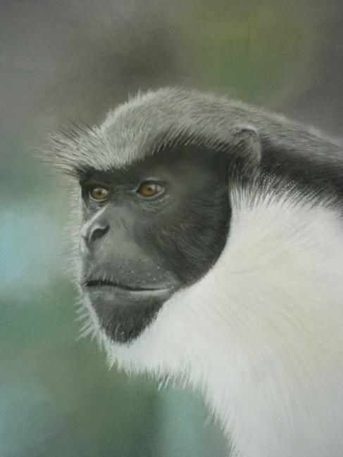 Let Me Play Too! - Drawing,  40x30 cm ©2009 by Paul Horton -            Diani Monkey Portrait