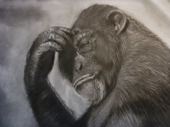 The Thinker - Drawing,  30x40 cm ©2010 by Paul Horton -            Primate Study