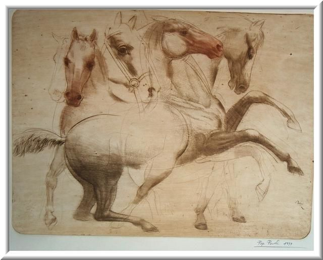"""Drawing titled """"""""Study of the Horse…"""" by Pavel Pop, Original Art, Other"""