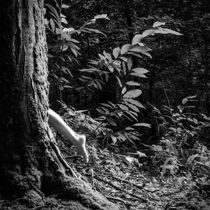 Black and white nude forest 11