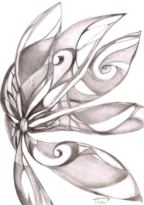 Volute Drawing By Pibou Artmajeur