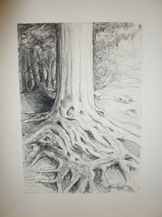 Bien enraciné...MON ARBRE! - Drawing,  15.8x11.8 in, ©2015 by Pierre Feyeux -                                                                                                                                                                                                                          Figurative, figurative-594, Tree, Hêtre