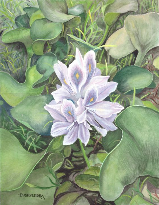 """Painting titled """"flower with diamond"""" by Pushpendra, Original Art, Watercolor"""