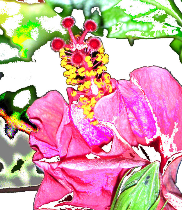 carcadee ismailia - Digital Arts ©2009 by solo spence -                                                                                                                    Abstract Expressionism, Art Deco, Outsider Art, Pop Art, Other, Abstract Art, Flower, World Culture