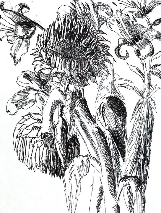 Sunflowers Drawings Raphael Perez Drawing Flowers Drawing By Raphael