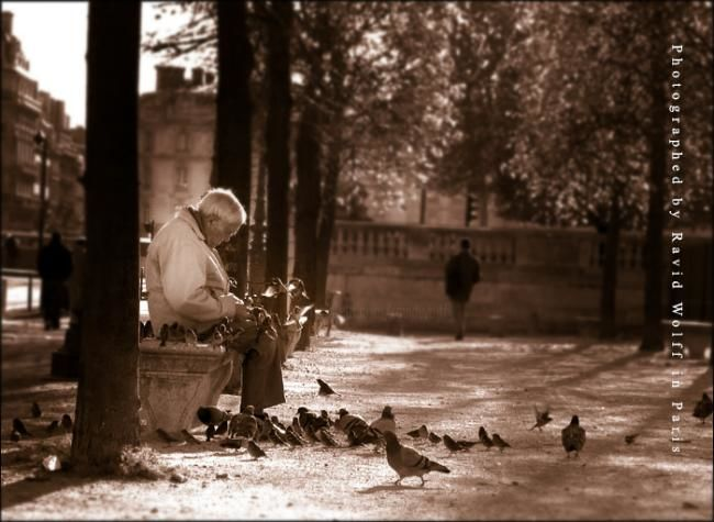 Old man in Paris - Photography, ©2003 by Ravid Wolff -