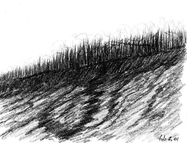 Untitled # 12 - Drawing,  8.8x11 in, ©2001 by Ray Garcia -