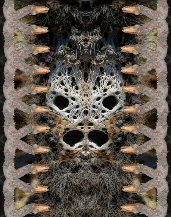 Cholla - Digital Arts,  20x16 in ©2016 by Richard Dodds -                                                        Surrealism, Paper, Botanic