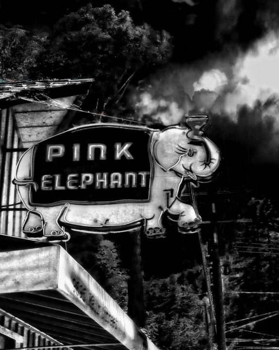 Pink Elephant - Photography,  12x16 in ©2016 by Richard Dodds -                                        Paper, Architecture