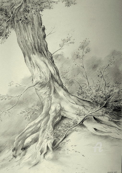 """Drawing titled """"In the dunes"""" by Roger Thijs, Original Art, Pencil"""