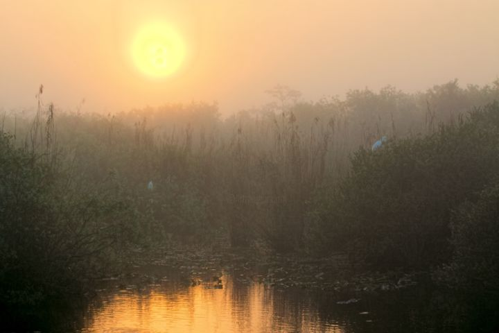 """Photography titled """"Sunrise in the Ever…"""" by Rudy Umans, Original Art,"""