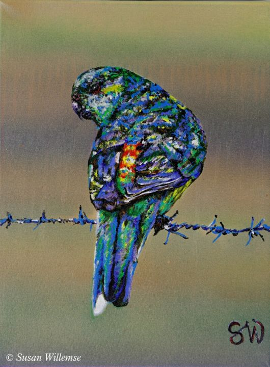 """Painting titled """"Red- rumped Parakeet"""" by Susan Willemse, Original Art, Acrylic Mounted on Stretcher frame"""