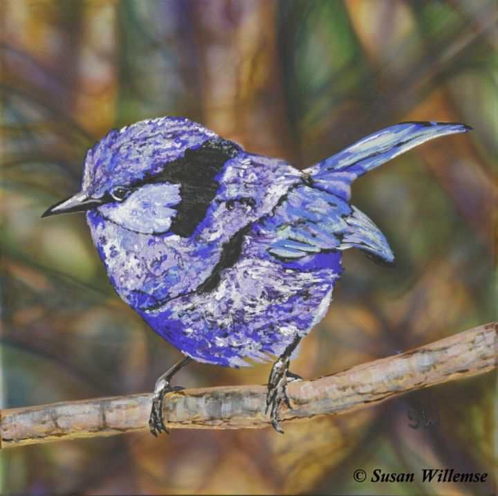 """Painting titled """"Splendid Fairy Wren"""" by Susan Willemse, Original Art, Acrylic Mounted on Stretcher frame"""