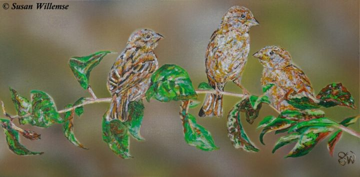 """Painting titled """"Rural Sparrows"""" by Susan Willemse, Original Art, Acrylic Mounted on Stretcher frame"""