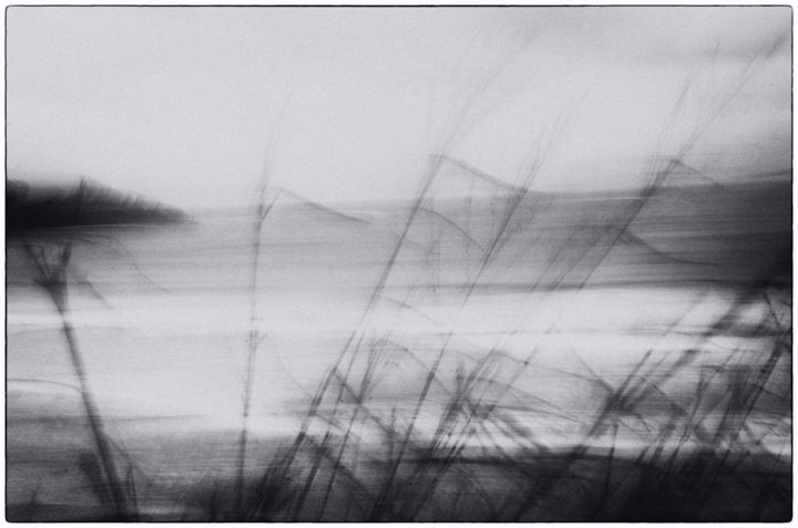 Vento - Photography ©2013 by salvatore avallone -                                            Abstract Art, Seascape, Fotografia, vento, canne, mare, astratto, Black and White