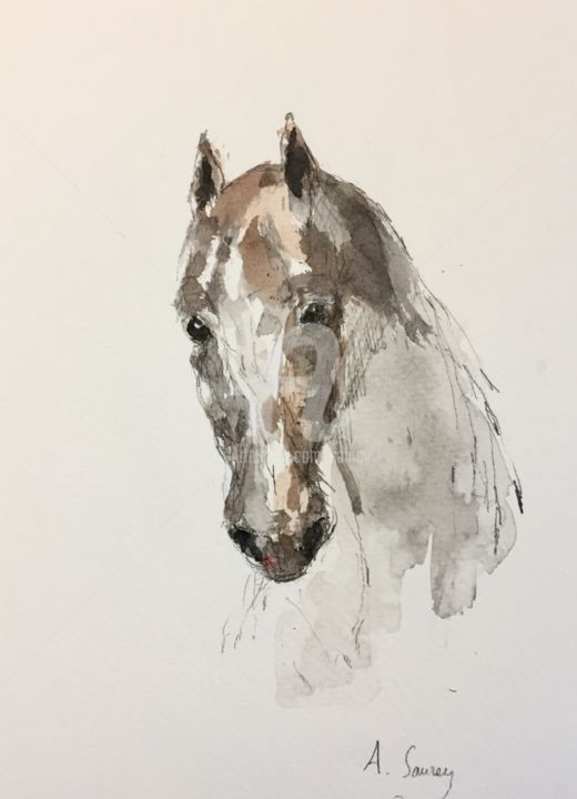 Cheval blanc - Painting,  18x14 cm ©2019 by A Sanrey -