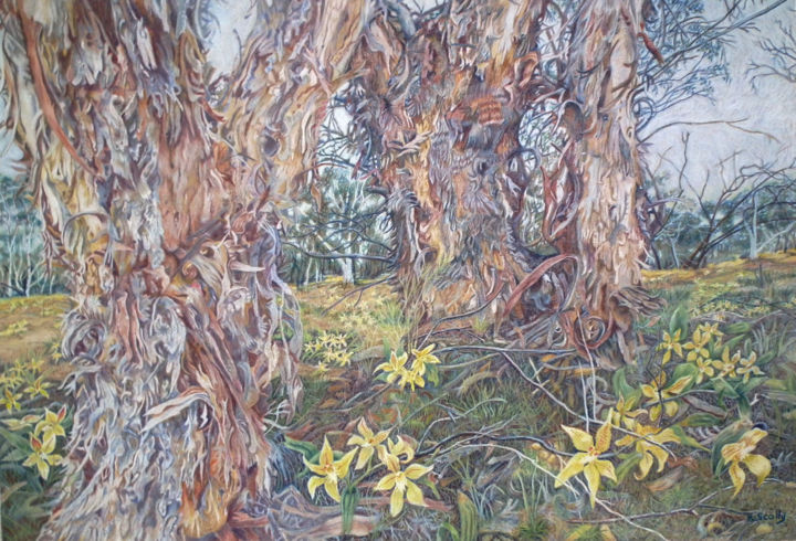 Barking Mad - Cow Slip Orchids - Painting,  50x70 cm ©2014 by Scally Art -                                                            Realism, Paper, Landscape, landscape, bark, tree, orchid, cowslip, Caladenia, Bullock Hills, Dumbleyung, Western Australia