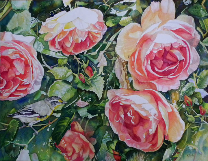 Crepuscule and Pardalote - Painting,  14x18 in ©2014 by Scally Art -                                                            Realism, Paper, Flower, Rose, pardalote, bird, Narrogin, Spring, Festival, flowers, scally, art, Dumbleyung