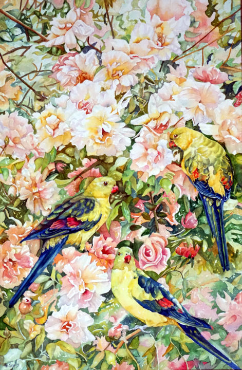 Fit for a Regent - Smoker with roses - Painting,  13x20 in ©2015 by Scally Art -                                            Realism, Paper, Parrot, Regent, rose, crepuscule, smoker, floral, flowers, Dumbleyung, Scally Art, Garden, Watercolour