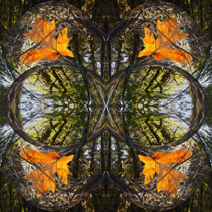 Autumn Forest 6 - Digital Arts, ©2017 by Kenneth Grzesik -                                                                                                                                                                                                                                                                                                                                                                                                                                                                                                                                                                                                                                                                                                                                                                                                                                                                                                                                                                                                                                                      Abstract, abstract-570, Other, Paper, Abstract Art, Botanic, Colors, Geometric, Landscape, modern, contemporary, digital abstract, image series, nature abstract, seasonal, autumn trees, forest, trees, square, abstraction, symmetry, geometric