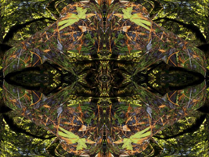 Autumn Forest 17 - Digital Arts,  30x40 in ©2017 by Kenneth Grzesik -                                                                                                                                                                                                                                                Abstract Art, Conceptual Art, Modernism, Surrealism, Symbolism, Other, Paper, Abstract Art, Botanic, Colors, Geometric, Landscape, Nature, Patterns, Places, Seasons, Time, Tree, series, digital abstract, modern, contemporary, forest, trees, autumn, seasonal, horizontal, color image, symmetry, geometric