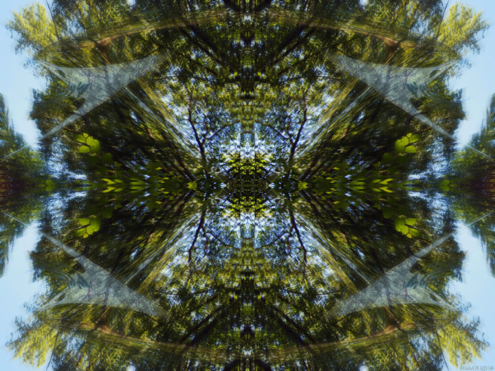Forest Abstract 3 - © 2018 digital abstract, geometric, symmetry, patterns, forest, green, environmental, kaliedoscopic, modern, contemporary, series, abstract landscape Online Artworks