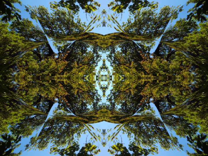 Forest Abstract 13 - Digital Arts,  18x24 in ©2018 by Kenneth Grzesik -                                                                                                                                                                                                                                                            Abstract Art, Conceptual Art, Modernism, Surrealism, Symbolism, Canvas, Other, Paper, Abstract Art, Botanic, Colors, Geometric, Landscape, Light, Nature, Patterns, Places, Seasons, Tree, digital abstract, modern, contemporary, naturalisn, environment, series, abstract landscape, trees, ambient, symmetry, geometry, harmony, kaleidoscopic, color image, sky