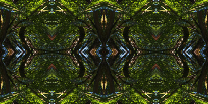 Forest Abstract 16 - © 2018 digital abstract, series, horizontal, symmetry, geometric, kaleidoscopic, primal, environmental, abstract pattern, abstract landscape, digital photography, digital print Online Artworks