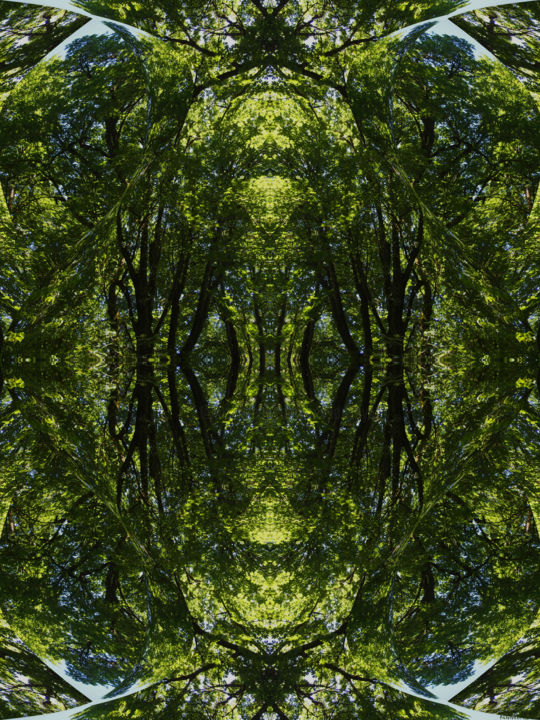 Forest Abstract 20 - Digital Arts,  24x18 in ©2018 by Kenneth Grzesik -                                                                                                                                                                                                                                                            Abstract Art, Conceptual Art, Modernism, Surrealism, Symbolism, Canvas, Other, Paper, Abstract Art, Botanic, Colors, Geometric, Landscape, Light, Nature, Patterns, Places, Seasons, Tree, digital abstract, modern, contemporary, series, abstract landscape, symmetry, kaleidoscopic, geometry, geometric pattern, color image, nature abstract