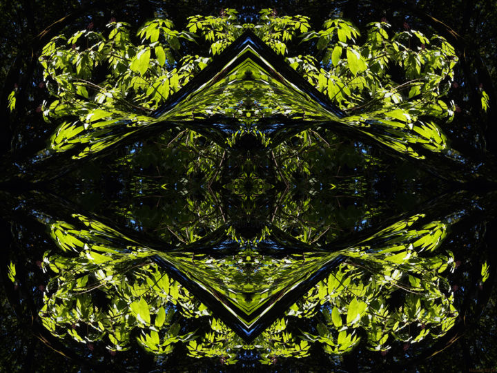 Forest Abstract 24 - © 2018 digital abstract, modern, contemporary, series, color image, new media, symmetry, symmetrical, kaliedoscopic, abstract landscape Online Artworks
