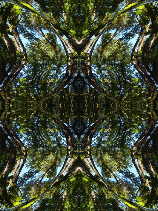 Forest Abstract 29 - Digital Arts,  24x18 in ©2018 by Kenneth Grzesik -                                                                                                                                                                                                                                                            Abstract Art, Conceptual Art, Modernism, Surrealism, Symbolism, Canvas, Other, Paper, Abstract Art, Botanic, Colors, Geometric, Landscape, Light, Nature, Patterns, Places, Seasons, Tree, digital abstract, modern, series, symmetry, symmetrical, kaliedoscopic, contemporary, abstract landscape, nature abstract, trees, forest, sky