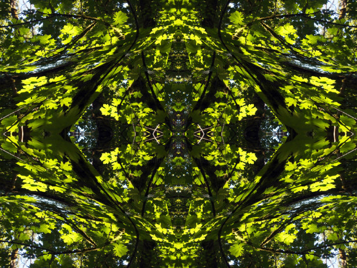 Forest Abstract 30 - Digital Arts,  18x24 in ©2018 by Kenneth Grzesik -                                                                                                                                                                                                                                                            Abstract Art, Conceptual Art, Modernism, Surrealism, Symbolism, Canvas, Other, Paper, Abstract Art, Botanic, Colors, Geometric, Landscape, Light, Nature, Patterns, Places, Seasons, Tree, digital abstract, abstract landscape, digital landscape, series, geometry, geometric patterns, nature patterns, forest landscape, symmetry, symmetrical, kaliedoscopic, contemporary abstract, contemporary design, modern image, color image