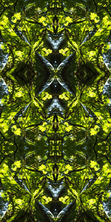 Forest Abstract 31 - Digital Arts,  36x18 in ©2018 by Kenneth Grzesik -                                                                                                                                                                                                                                                            Abstract Art, Conceptual Art, Modernism, Surrealism, Symbolism, Canvas, Other, Paper, Abstract Art, Botanic, Colors, Geometric, Landscape, Light, Nature, Patterns, Places, Seasons, Tree, symmetry, symmetrical, kaliedoscopic, geometry, forest abstract, digital abstract, abstract landscape, nature abstract, nature patterns, series, color image, modern, contemporary abstract