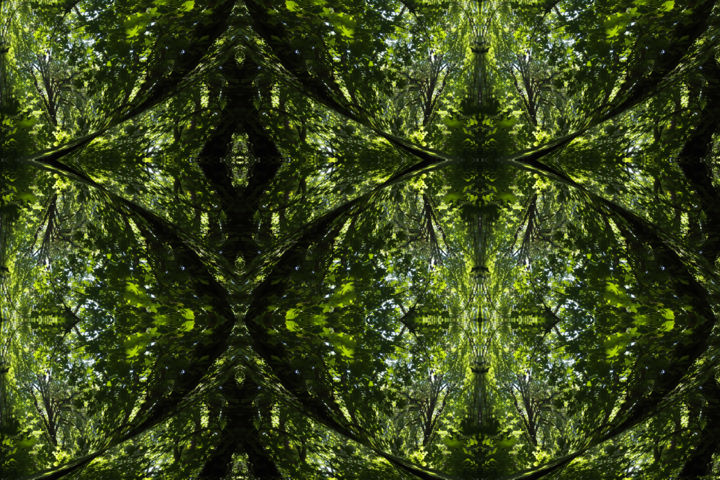 Forest Abstract 35 - Digital Arts,  20x30 in ©2018 by Kenneth Grzesik -                                                                                                                                                                                                                                                            Abstract Art, Conceptual Art, Modernism, Surrealism, Symbolism, Canvas, Other, Paper, Abstract Art, Botanic, Colors, Geometric, Landscape, Light, Nature, Patterns, Places, Seasons, Tree, digital abstract, nature abstract, modern, contemporary, geometry, abstract landscape, symmetry, symmetrical, kaleidoscopic