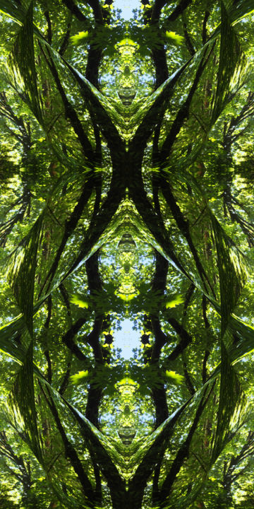 Forest Abstract 39 - Digital Arts, ©2019 by Kenneth Grzesik -                                                                                                                                                                                                                                                                                                                                                                                                                                                                                                                                                                                                                                                                                                                                                                                                                                                                                                                                                              Abstract, abstract-570, Canvas, Paper, Abstract Art, Botanic, Colors, Geometric, Landscape, digital abstract, modern abstract, abstract landscape, image series, nature patterns, forest environment, symmetrical art, symmetrical image, geometry, kaliedoscopic art, modern art
