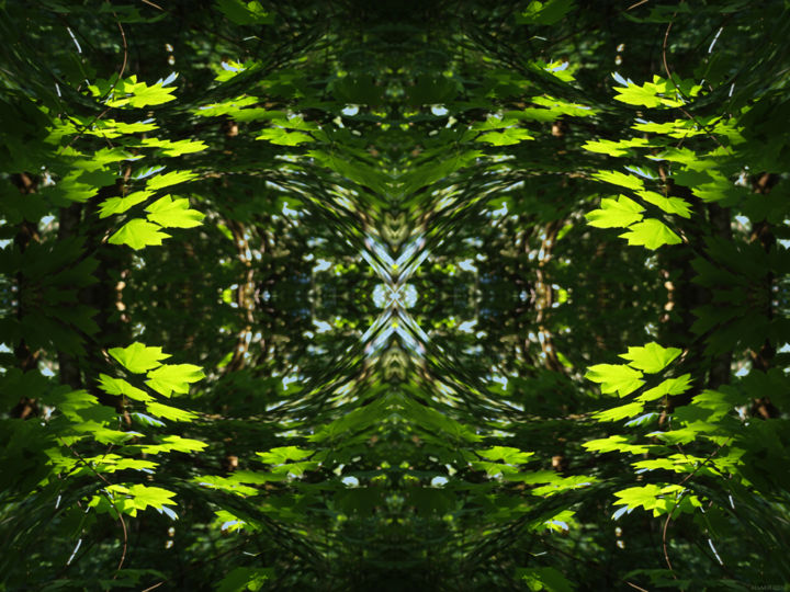 Forest Abstract 44 - Digital Arts,  18x24 in ©2018 by Kenneth Grzesik -                                                                                                                                                                                                                                                            Abstract Art, Conceptual Art, Modernism, Surrealism, Symbolism, Canvas, Other, Paper, Abstract Art, Botanic, Colors, Geometric, Landscape, Light, Nature, Patterns, Places, Seasons, Tree, digital abstract, geometry, symmetry, symmetrical, kaleidoscopic, nature patterns, abstract landscape, horizontal, image series, nature series, nature abstract, color image