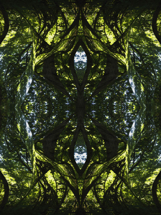 Forest Abstract 45 - © 2018 digital abstract, nature abstract, image series, modern abstract, contemporary, symmetry, symmetrical, geometry, nature patterns, organic Online Artworks