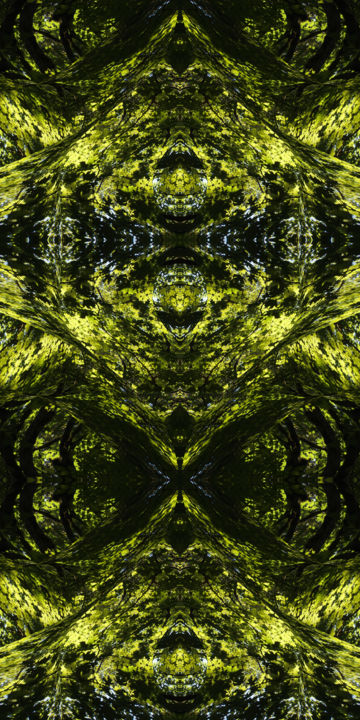 Forest Abstract 47 - Digital Arts,  36x18 in ©2018 by Kenneth Grzesik -                                                                                                                                                                                                                                                            Abstract Art, Conceptual Art, Modernism, Surrealism, Symbolism, Canvas, Other, Paper, Abstract Art, Botanic, Colors, Geometric, Landscape, Light, Nature, Patterns, Places, Seasons, Tree, digital abstract, image series, abstract landscape, organic, geometry, color image, contemporary, modern abstract, nature design, geometric design, symmetrical art, symmetry, kaleidoscopic art