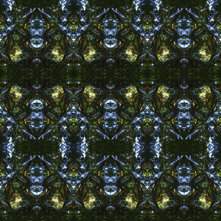 Forest Abstract 50 - © 2018 digital abstract, modern art, modern image, symmetry, symmetrical art, symmetrical image, image series, art series, digital art series, kaleidoscopic art, kaleidoscopic image, abstract landscape, nature art, square art, square image, organic art, organic image Online Artworks