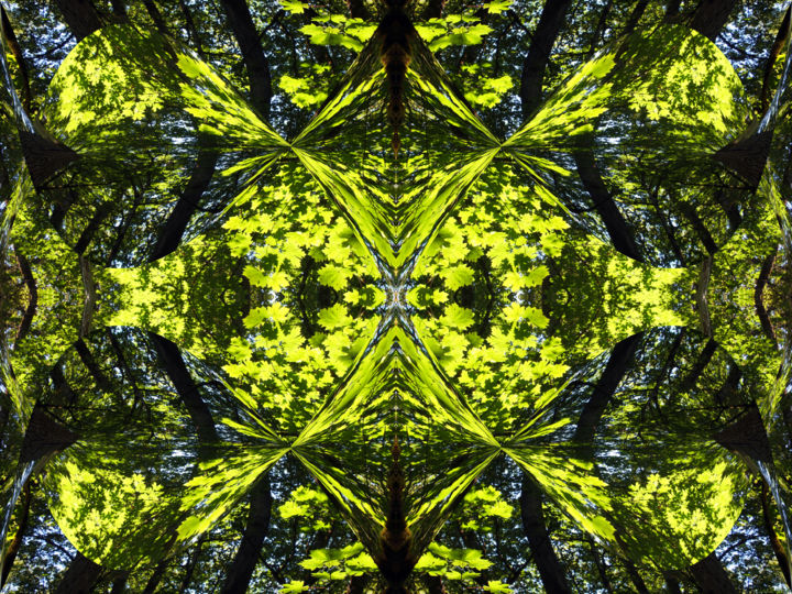 Forest Abstract 51 - Digital Arts,  18x24 in ©2018 by Kenneth Grzesik -                                                                                                                                                                                                                                                            Abstract Art, Conceptual Art, Modernism, Surrealism, Symbolism, Canvas, Other, Paper, Abstract Art, Botanic, Colors, Geometric, Landscape, Light, Nature, Patterns, Places, Seasons, Tree, digital abstract, modern art, contemporary art, symmetrical art, symmertical image, geometric art, geometric image, kaleidoscopeic art, kaleidoscopic image, color image, organic art, organic image, horizontal art, horizontal image, nature art, nature image