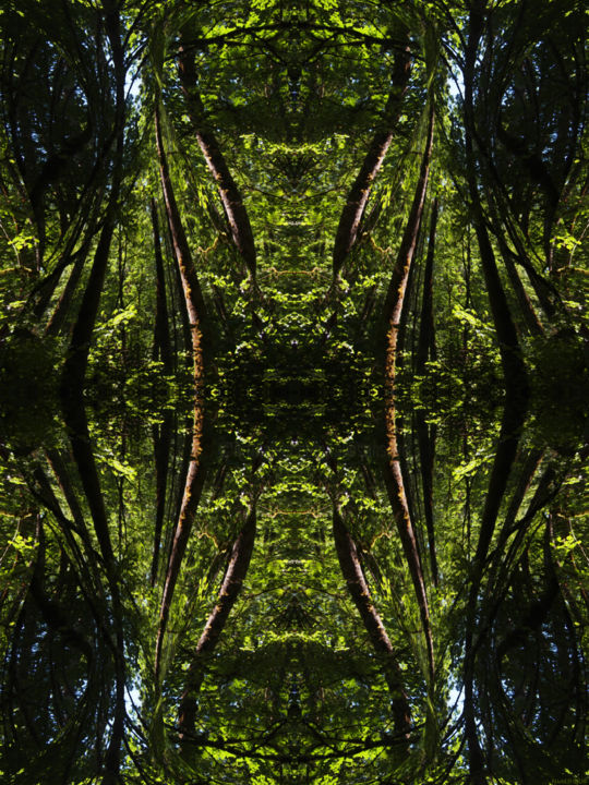 Forest Abstract 52 - © 2018 digital abstract, symmetry, symmetrical art, symmetrical image, geometry, geometric art, geometric image, kaleidoscopic art, kaleidoscopic image, image series, art series, modern art, contemporary art, forest image, abstract landscape Online Artworks