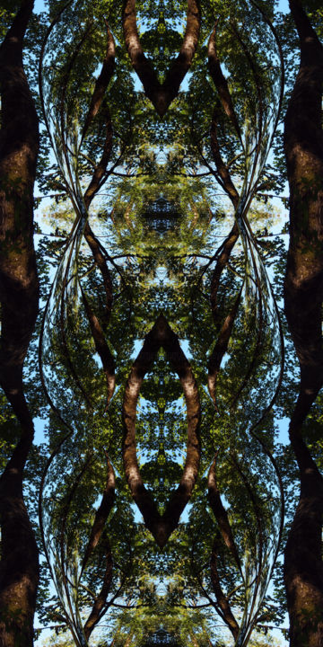 Forest Abstract 54 - © 2018 modern art, symmetrical art, symmetrical image, digital abstract, serial art, serial image, abstract landscape, nature abstract, kaleidoscopic art, kaleidoscopic image, organic art, organic image, geometric patterns, forest environment, forest ambient Online Artworks