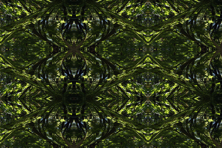 Forest Abstract 55 - © 2019 digital abstract, contemporary abstract, symmetrical art, symmetrical design, symmetrical image, kaleidoscopic art, kaleidoscopic design, kaleidoscopic image, image series, serial art, contemporary design, modern design, art from nature, organic art, organic image, nature art series Online Artworks