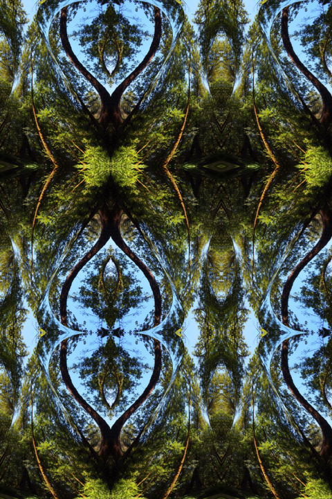 Forest Abstract 56 - © 2019 digital abstract, modern art, contemporary art, art series, serial image, symmetrical art, symmetrical image, kaleidoscopic art, kaleidoscopic image, forest environment, color image, abstract landscape Online Artworks