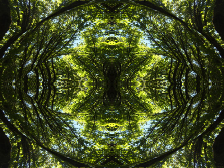 Forest Abstract 58 - Digital Arts, ©2019 by Kenneth Grzesik -                                                                                                                                                                                                                                                                                                                                                                                                                                                                                                                                                                                                                                                                                                                                                                                                                                                                                                                                                          Abstract, abstract-570, Abstract Art, Geometric, Nature, Patterns, Tree, digital abstract, contemporary, series, symmetry, symmetrical, kaleidoscopic, forest, green, organic, color image, nature abstract, landscape, new media