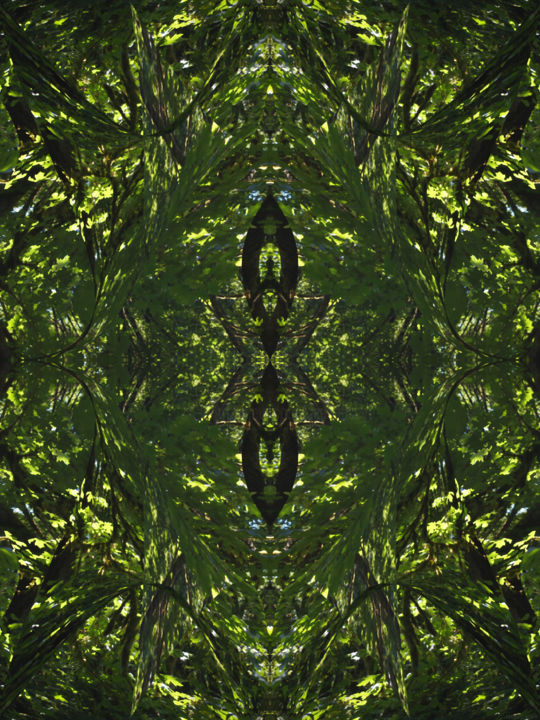 Forest Abstract 59 - Digital Arts, ©2019 by Kenneth Grzesik -                                                                                                                                                                                                                                                                                                                                                                                                                                                                                                                                                                                                                                                                                                                                                                                                                                                                                                                                                          Abstract, abstract-570, Abstract Art, Botanic, Geometric, Nature, Patterns, abstract landscape, series, forest, trees, modern, contemporary, symmetry, organic, kaleidoscopic, green, environment, harmony, balance