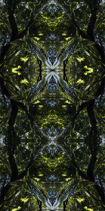 Forest Abstract 61 - Digital Arts, ©2019 by Kenneth Grzesik -                                                                                                                                                                                                                                                                                                                                                                                                                                                                                                                                                                                                                                                                                                                                                                                                                                                                                                                                                          Expressionism, expressionism-591, Abstract Art, Geometric, Patterns, Tree, digital abstract, series, abstract landscape, modern, contemporary, symmetry, symmetrical image, kaleidoscopic art, kaleidoscopic image, organic image, forest, trees, design from nature, nature abstract